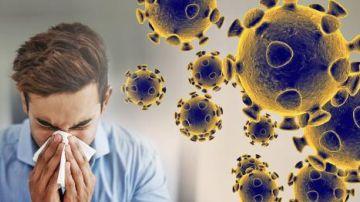 Información sobre el coronavirus en Polonia.